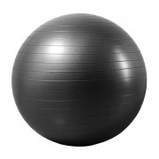 Endurance Gym Ball 55 cm