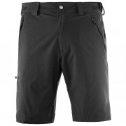 Salomon Wayfarer Shorts Herre